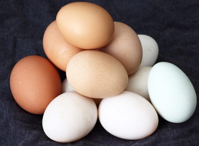 Huevos evaluación de seguridad