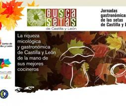 Jornadas de las setas en Castilla y León