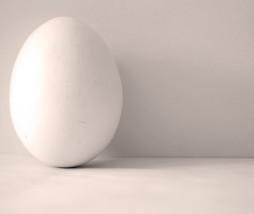 Contenido nutricional huevo