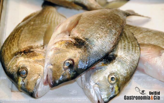 Calidad del pescado fresco