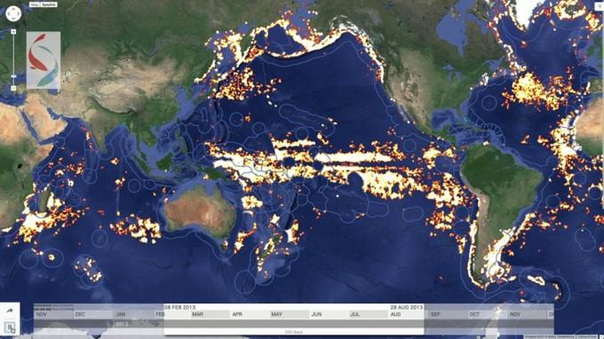 Seguimiento de la pesca en el mundo