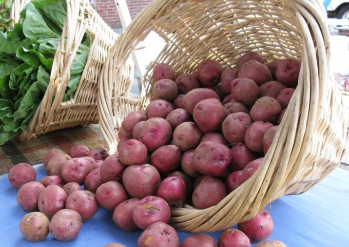 Precio de las patatas