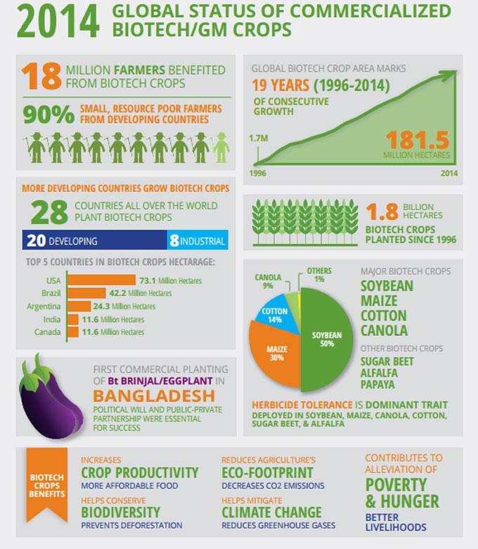Cultivo de alimentos biotecnológicos
