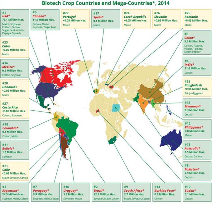 Mapa de transgénicos en el mundo