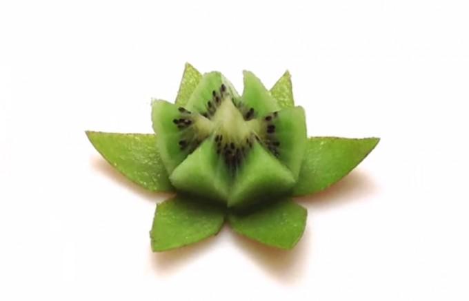 Kiwi flor de loto