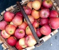 El 38% de manzana es de importación