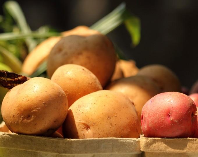 Precio de las patatas en España