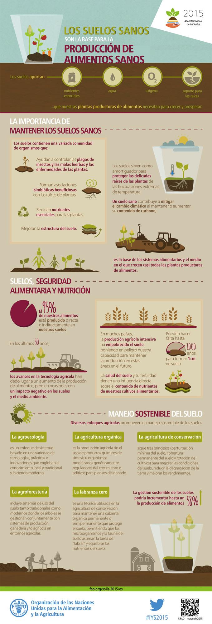 La importancia de la tierra para el cultivo de alimentos