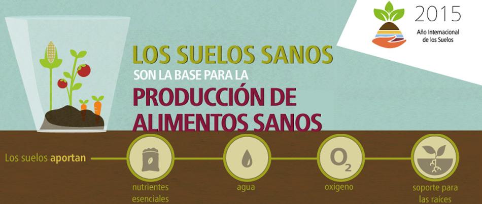 Infografía: Los Suelos Sanos son la Base para la Producción de Alimentos Sanos