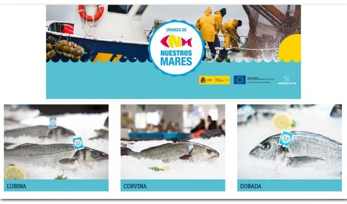 Crianza de Nuestros Mares, sello de calidad de pescados de acuicultura nacionales
