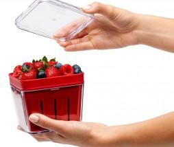 Recipiente para fresas, frambuesas, grosellas, moras...