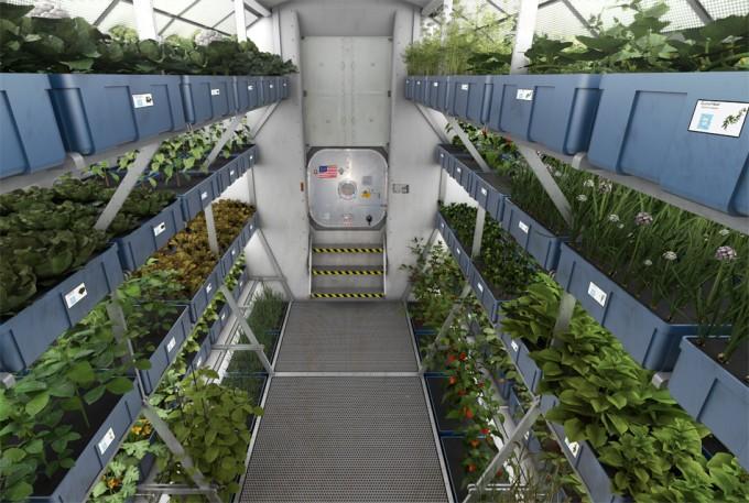 Alimentos producidos en el espacio