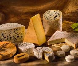 Adictos al queso