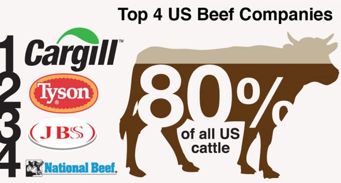 Corporaciones alimentarias