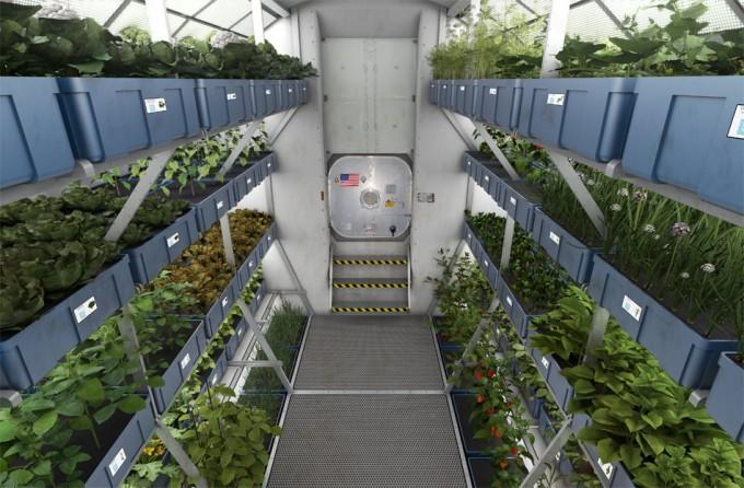 Alimentos cultivados fuera de la Tierra