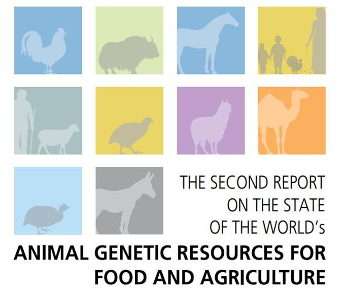 Informe de la FAO
