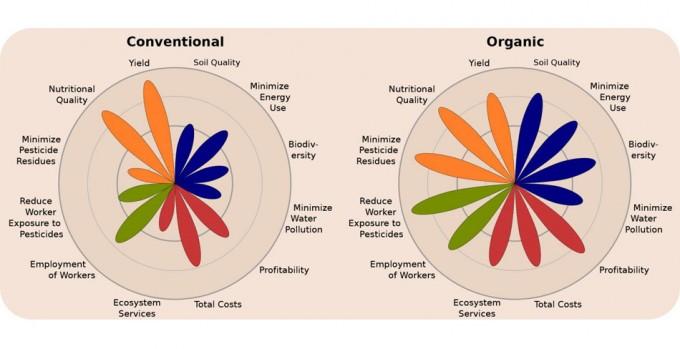 Producción de alimentos ecológicos