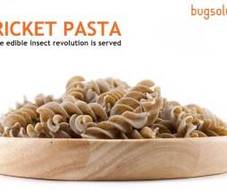 Alimentos elaborados con insectos