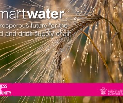 Smart Water: A prosperous future for the food and drink supply chain