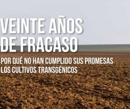 Mitos cultivos transgénicos