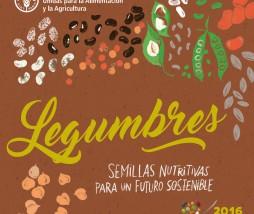 Recetas con legumbres de la FAO