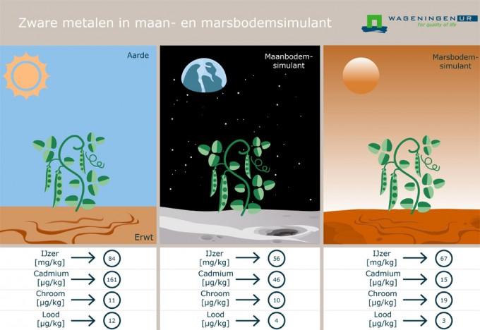 Producción de alimentos en la Luna y Marte