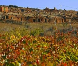 Vinos de León y el Bierzo