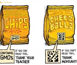 Etiquetado de alimentos modificados genéticamente