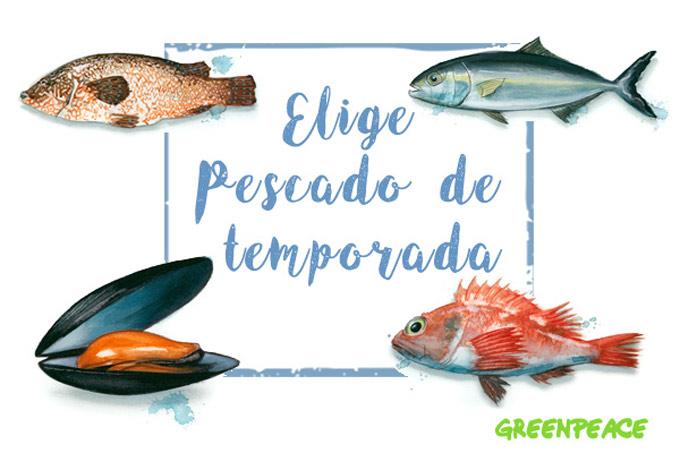 Guía de pescado Greenpeace