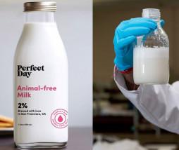 bebida que imita la leche de vaca