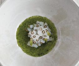Calamares frescos y caldo de grosellas blancas