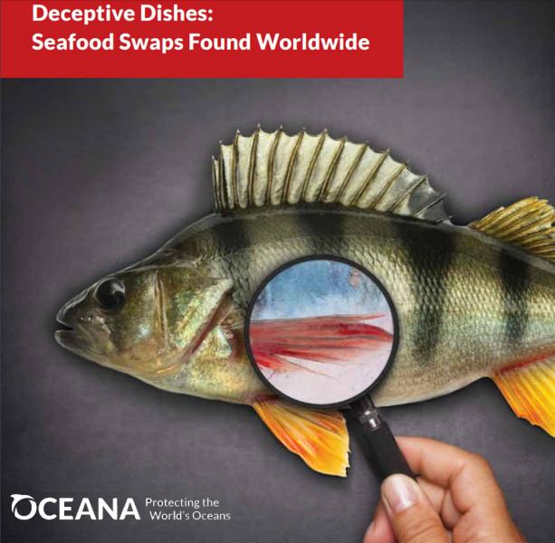 Informe sobre el fraude del pescado de Oceana