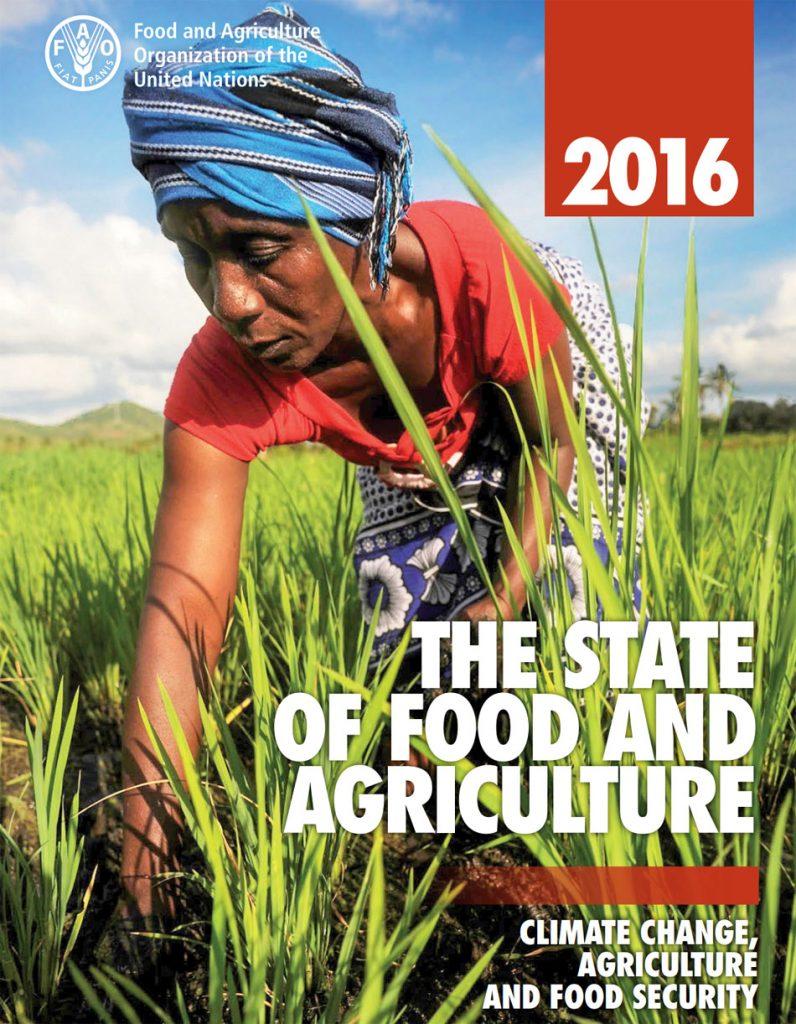 Organización de las Naciones Unidas para la Agricultura y la Alimentación