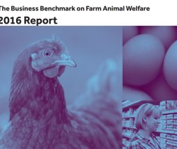 Business Benchmark on Farm Animal Welfare