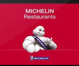 Aplicación Michelin