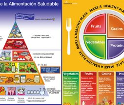 Consejos nutrición