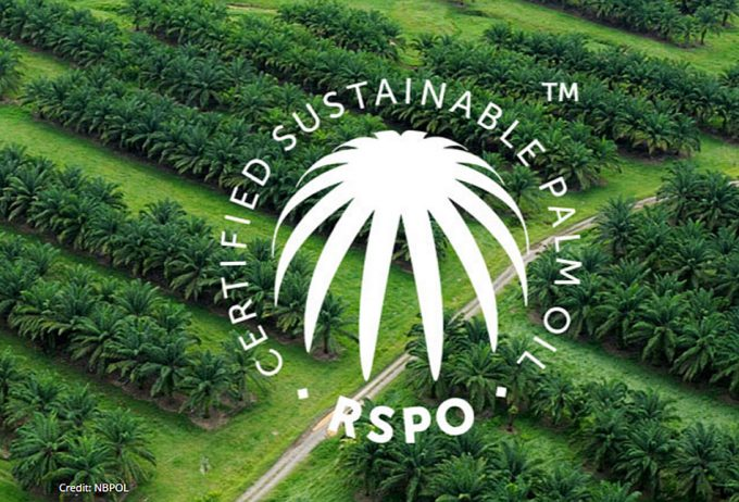 The Roundtable on Sustainable Palm Oil
