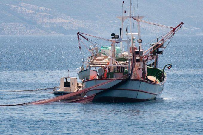 Lucgar contra la sobrepesca en el Mar Mediterráneo