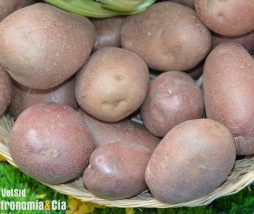 Patata vieja de Francia