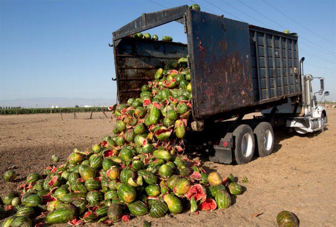 cifras sobre el desperdicio alimentario