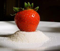 Estudios científicos de la industria alimentaria