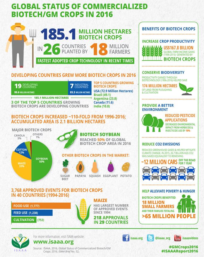 Alimentos biotecnológicos