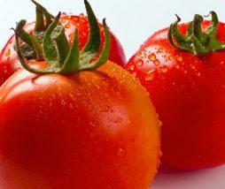 Cómo congelar tomates