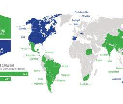 Servicio Internacional para la Adquisición de Aplicaciones Agro-biotecnológicas