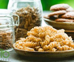 Venta online de alimentos elaborados con insectos