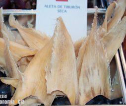 Sopa de aleta de tiburón