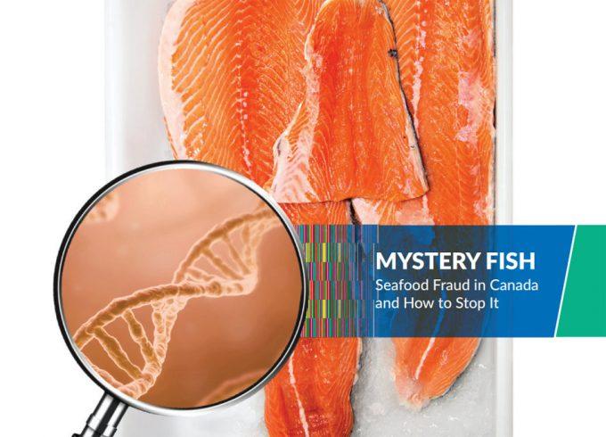 Informe de Oceana sobre el fraude pesquero
