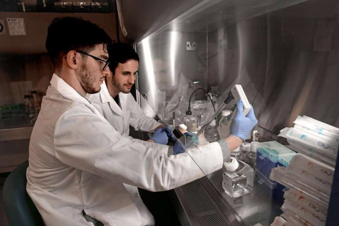 carne de pescado in vitro