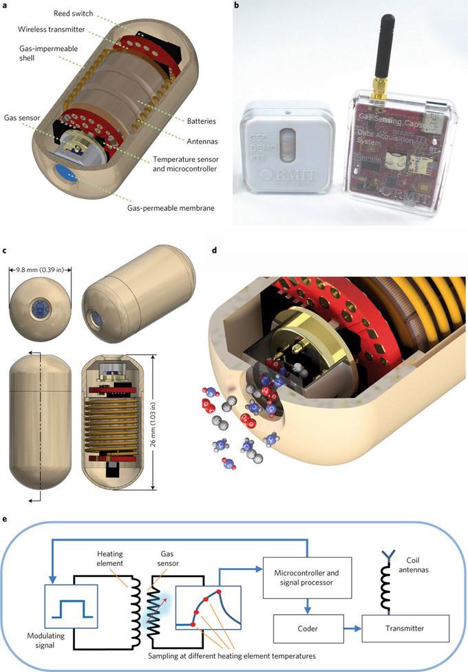 Sensores para analizar el intestino