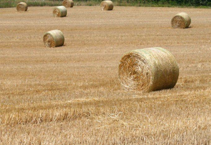 Soberanía agraria en Francia